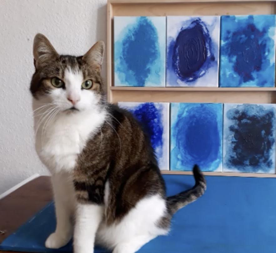 Ateliervideo Birgit Rakette